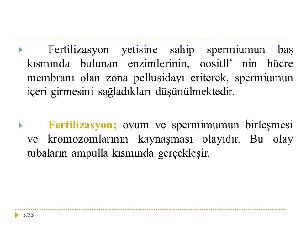  Fertilizasyon yetisine sahip spermiumun baş kısmında bulunan enzimlerinin, oositll' nin hücre membranı olan zona pellusidayı eriterek, spermiumun iç