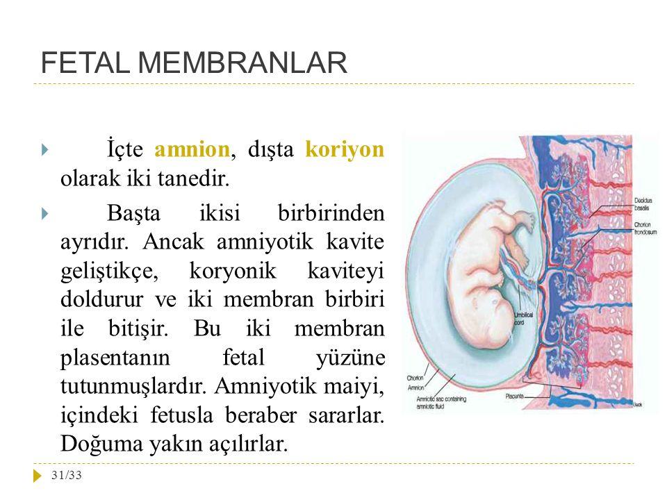 FETAL MEMBRANLAR  İçte amnion, dışta koriyon olarak iki tanedir.  Başta ikisi birbirinden ayrıdır. Ancak amniyotik kavite geliştikçe, koryonik kavit