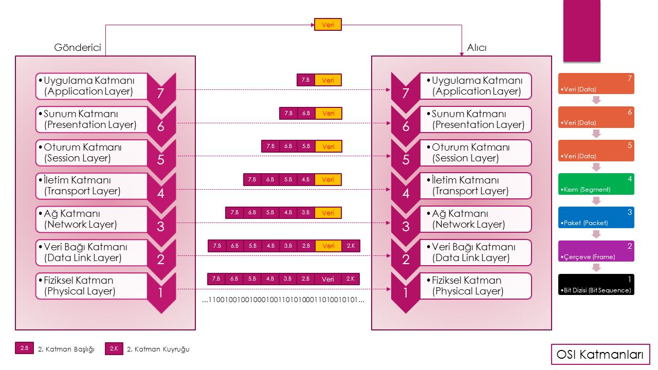 OSI Referans Modelinde Veri Başlıkları MAC Adresi (Gönderici) MAC Adresi (Alıcı) IP Adresi (Gönderici) IP Adresi (Alıcı) Veri (Data) Sıra No (Sequence Number) Sağlama Değeri (Checksum) Segment (Kısım) Packet (Paket) Frame (Çerçeve)