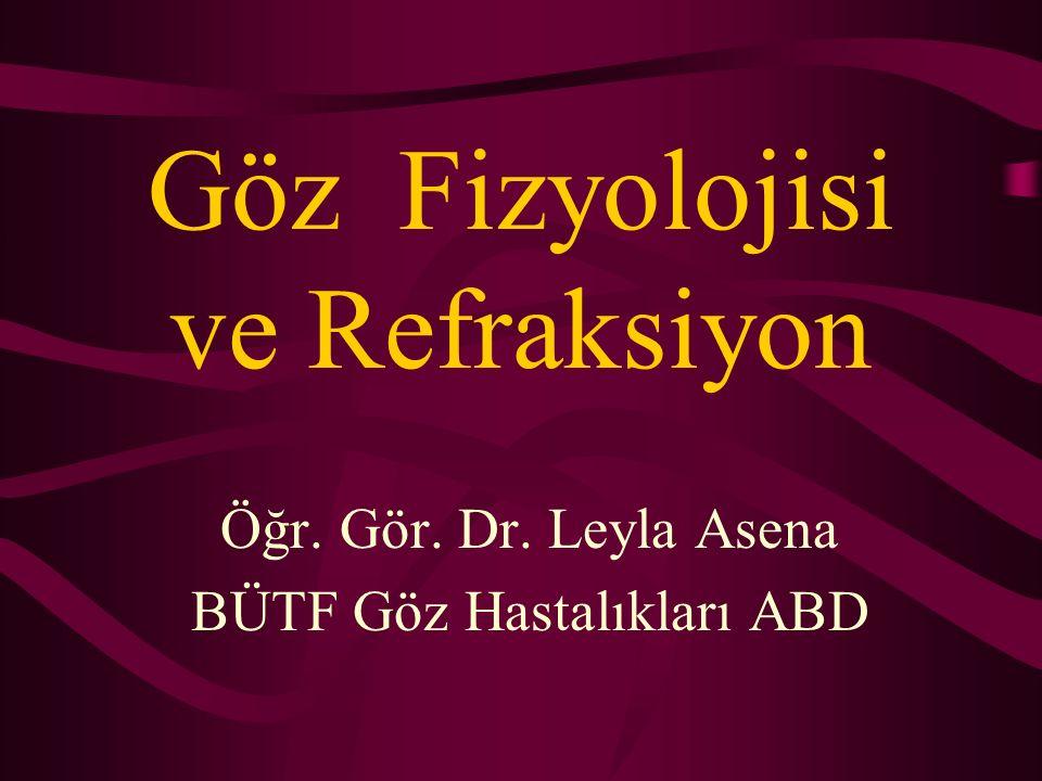 Göz Fizyolojisi ve Refraksiyon Öğr. Gör. Dr. Leyla Asena BÜTF Göz Hastalıkları ABD