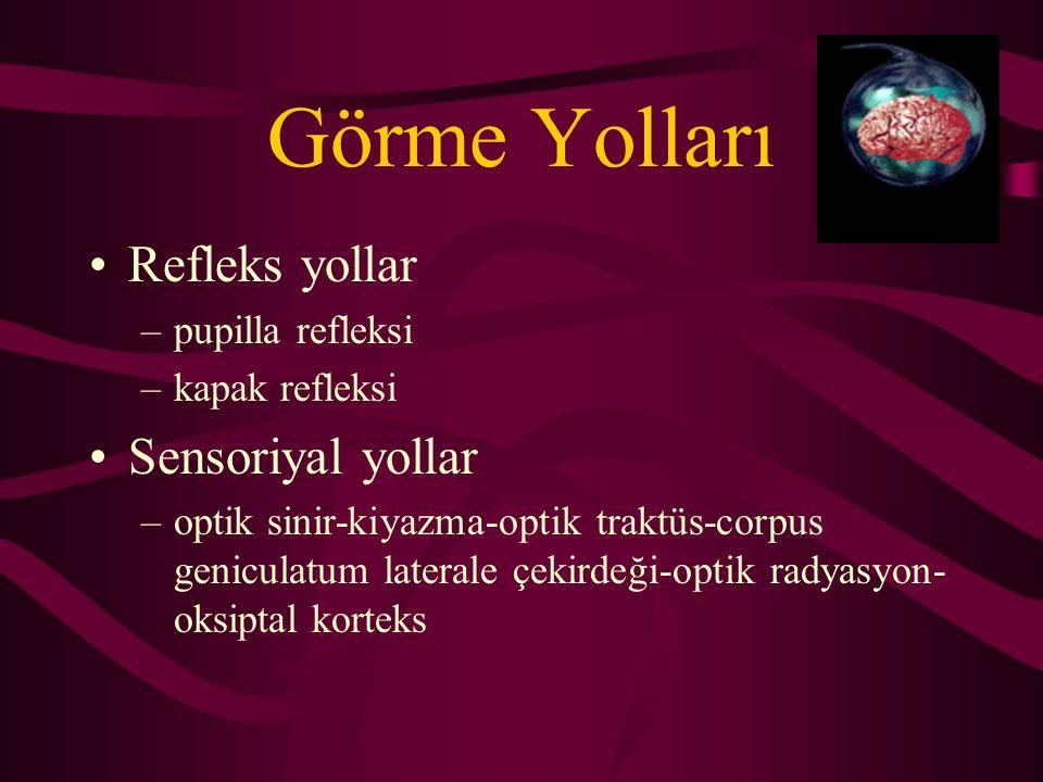 Görme Yolları Refleks yollar –pupilla refleksi –kapak refleksi Sensoriyal yollar –optik sinir-kiyazma-optik traktüs-corpus geniculatum laterale çekird
