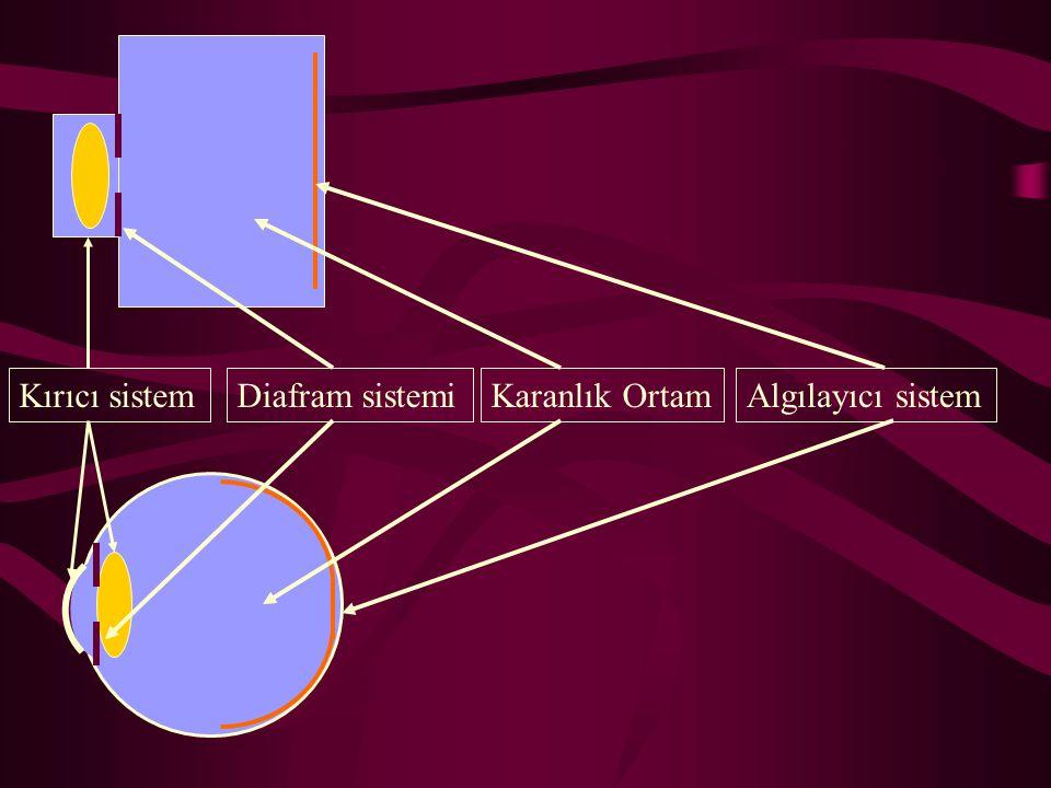 Kırıcı sistemDiafram sistemiKaranlık OrtamAlgılayıcı sistem