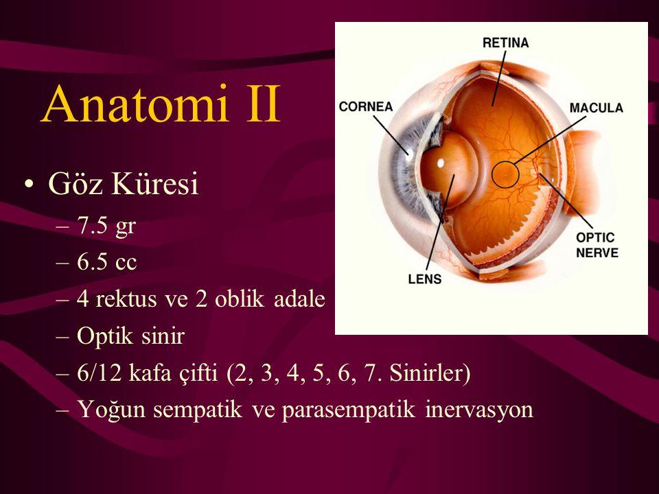 Anatomi Konjonktiva Kornea - sklera Uvea ( koroid – silier cisim – iris ) Lens Retina Vitreus