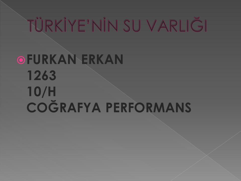  FURKAN ERKAN 1263 10/H COĞRAFYA PERFORMANS