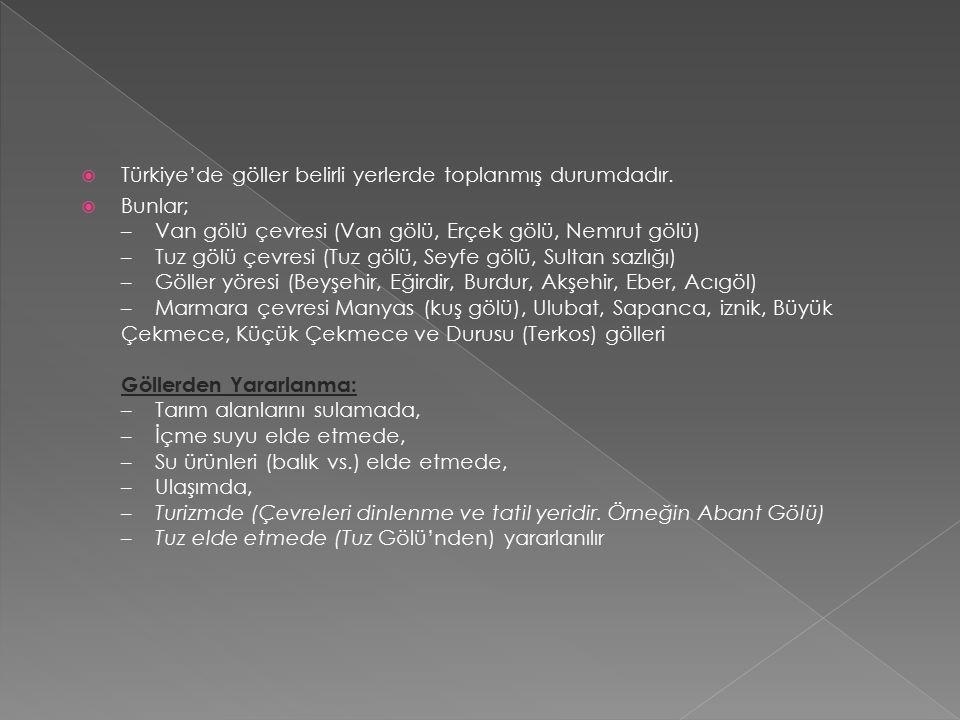  Türkiye'de göller belirli yerlerde toplanmış durumdadır.
