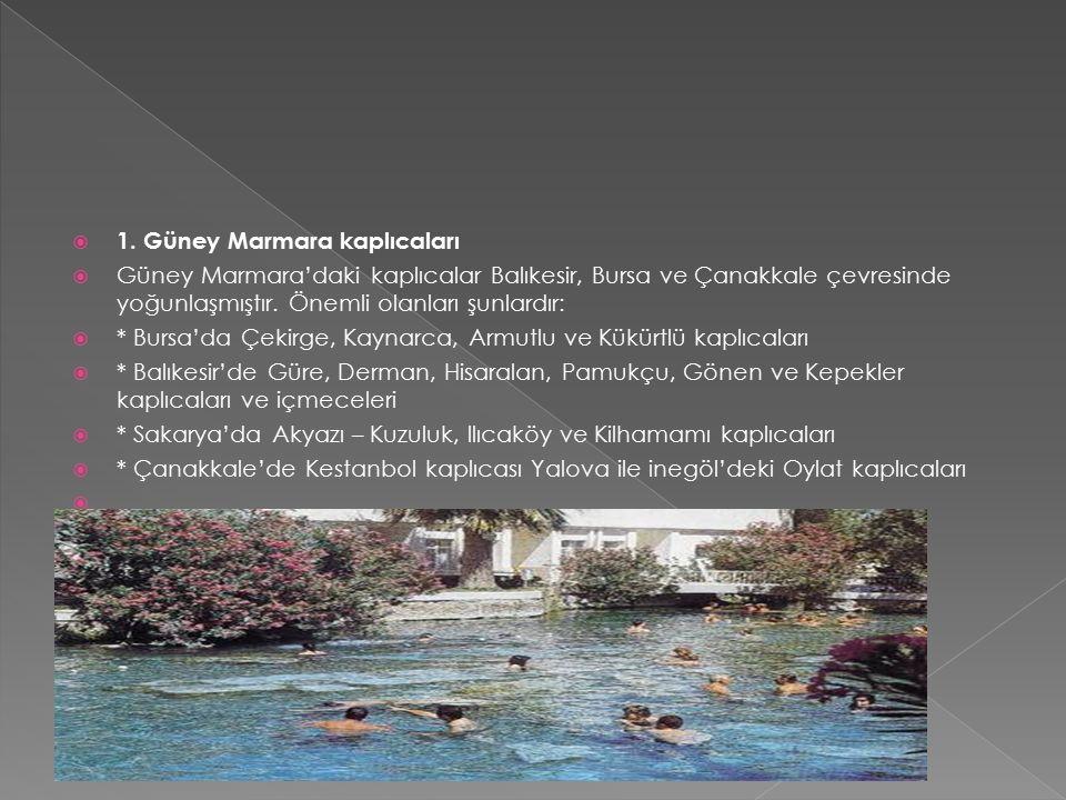  1. Güney Marmara kaplıcaları  Güney Marmara'daki kaplıcalar Balıkesir, Bursa ve Çanakkale çevresinde yoğunlaşmıştır. Önemli olanları şunlardır:  *