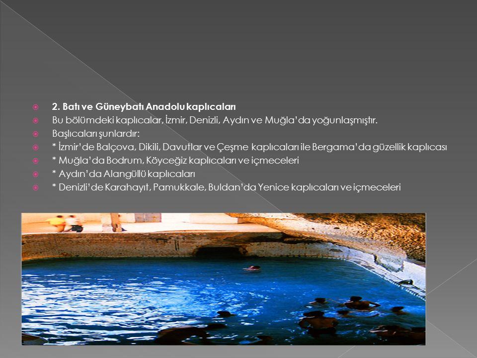  2. Batı ve Güneybatı Anadolu kaplıcaları  Bu bölümdeki kaplıcalar, İzmir, Denizli, Aydın ve Muğla'da yoğunlaşmıştır.  Başlıcaları şunlardır:  * İ