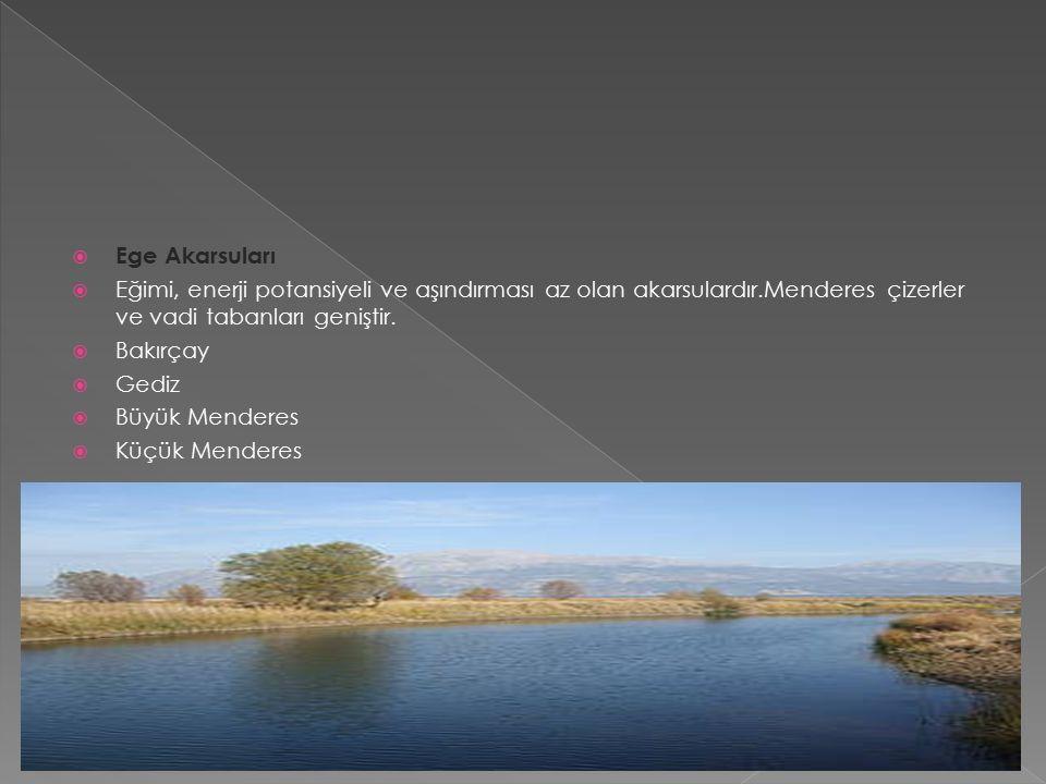  Marmara Akarsuları  Eğimleri azdır.Dolayısıyla hidroelektrik potansiyelleri azdır.