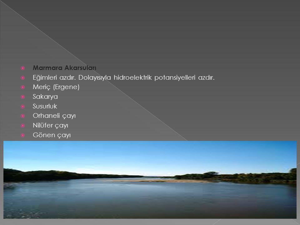  Marmara Akarsuları  Eğimleri azdır. Dolayısıyla hidroelektrik potansiyelleri azdır.
