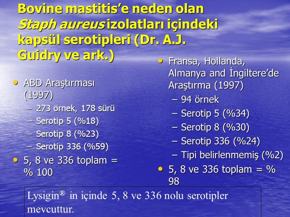 Bovine mastitis'e neden olan Staph aureus izolatları içindeki kapsül serotipleri (Dr.