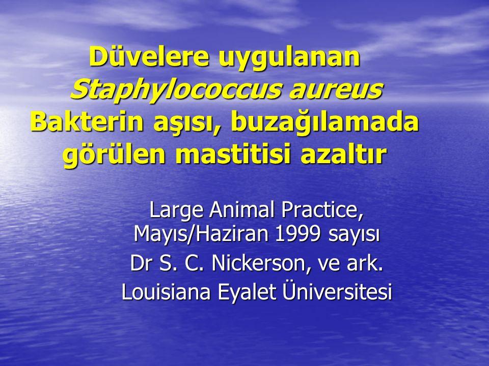 Düvelere uygulanan Staphylococcus aureus Bakterin aşısı, buzağılamada görülen mastitisi azaltır Large Animal Practice, Mayıs/Haziran 1999 sayısı Dr S.
