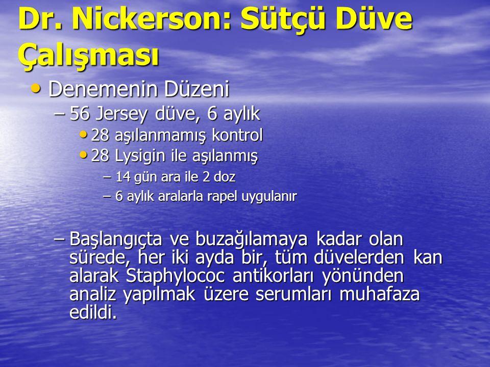 Dr. Nickerson: Sütçü Düve Çalışması Denemenin Düzeni Denemenin Düzeni –56 Jersey düve, 6 aylık 28 aşılanmamış kontrol 28 aşılanmamış kontrol 28 Lysigi