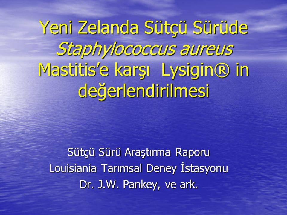 Yeni Zelanda Sütçü Sürüde Staphylococcus aureus Mastitis'e karşı Lysigin® in değerlendirilmesi Sütçü Sürü Araştırma Raporu Louisiania Tarımsal Deney İstasyonu Dr.