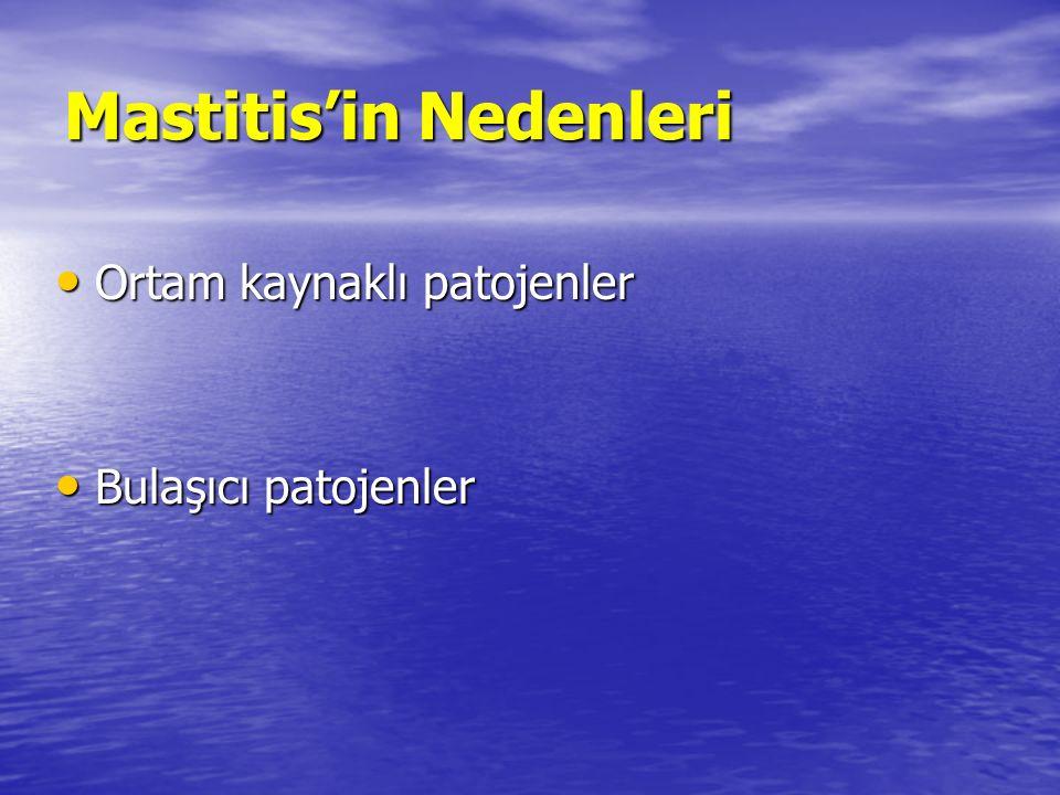 Mastitis'in Nedenleri Ortam kaynaklı patojenler Ortam kaynaklı patojenler Bulaşıcı patojenler Bulaşıcı patojenler