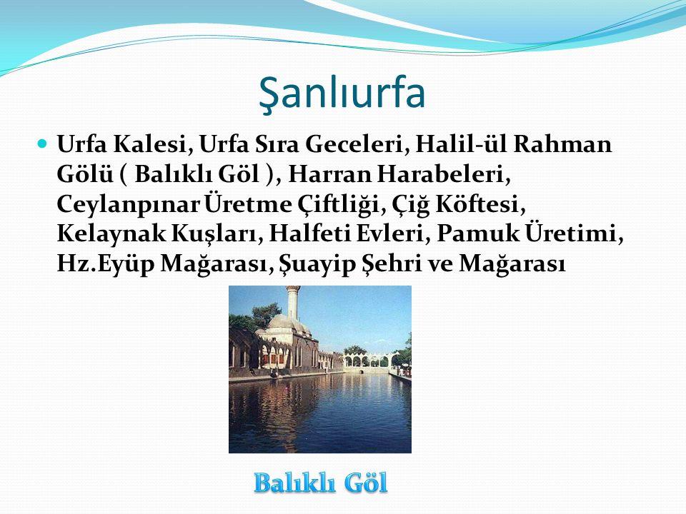 Şanlıurfa Urfa Kalesi, Urfa Sıra Geceleri, Halil-ül Rahman Gölü ( Balıklı Göl ), Harran Harabeleri, Ceylanpınar Üretme Çiftliği, Çiğ Köftesi, Kelaynak