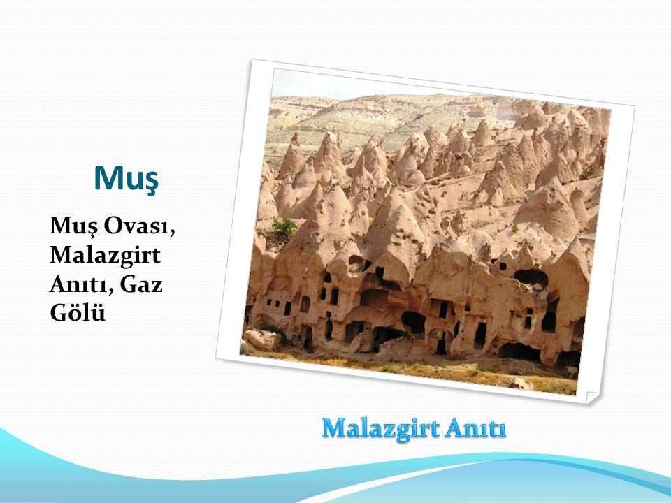 Muş Muş Ovası, Malazgirt Anıtı, Gaz Gölü