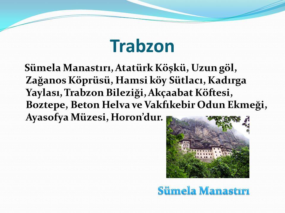 Trabzon Sümela Manastırı, Atatürk Köşkü, Uzun göl, Zağanos Köprüsü, Hamsi köy Sütlacı, Kadırga Yaylası, Trabzon Bileziği, Akçaabat Köftesi, Boztepe, B