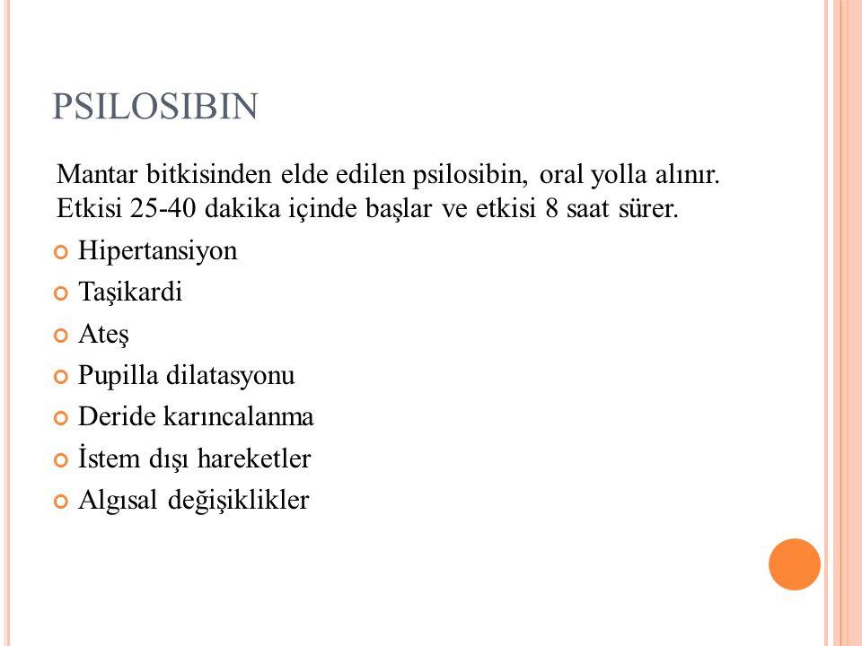 PSILOSIBIN Mantar bitkisinden elde edilen psilosibin, oral yolla alınır.