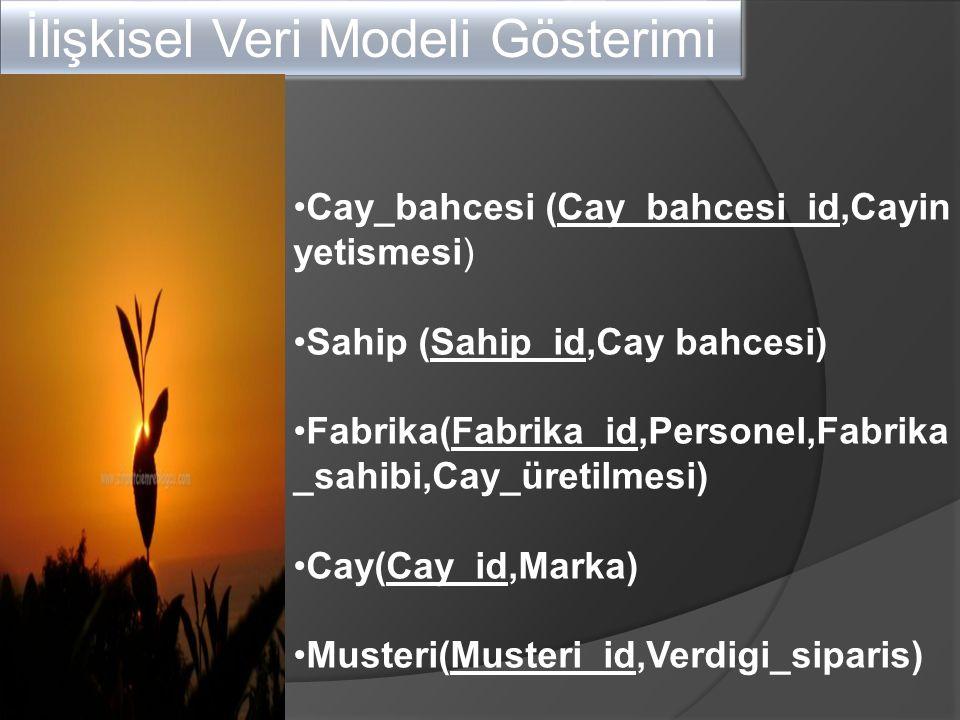 İlişkisel Veri Modeli Gösterimi Cay_bahcesi (Cay_bahcesi_id,Cayin yetismesi) Sahip (Sahip_id,Cay bahcesi) Fabrika(Fabrika_id,Personel,Fabrika _sahibi,