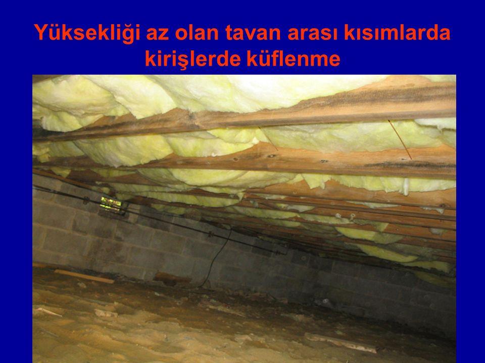 Yüksekliği az olan tavan arası kısımlarda kirişlerde küflenme