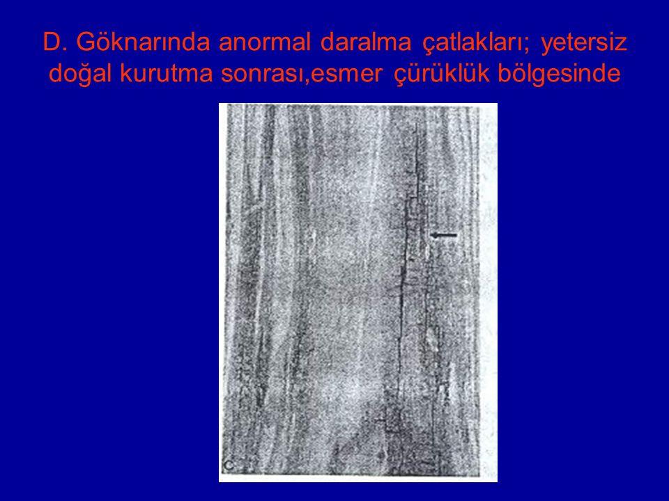 D. Göknarında anormal daralma çatlakları; yetersiz doğal kurutma sonrası,esmer çürüklük bölgesinde