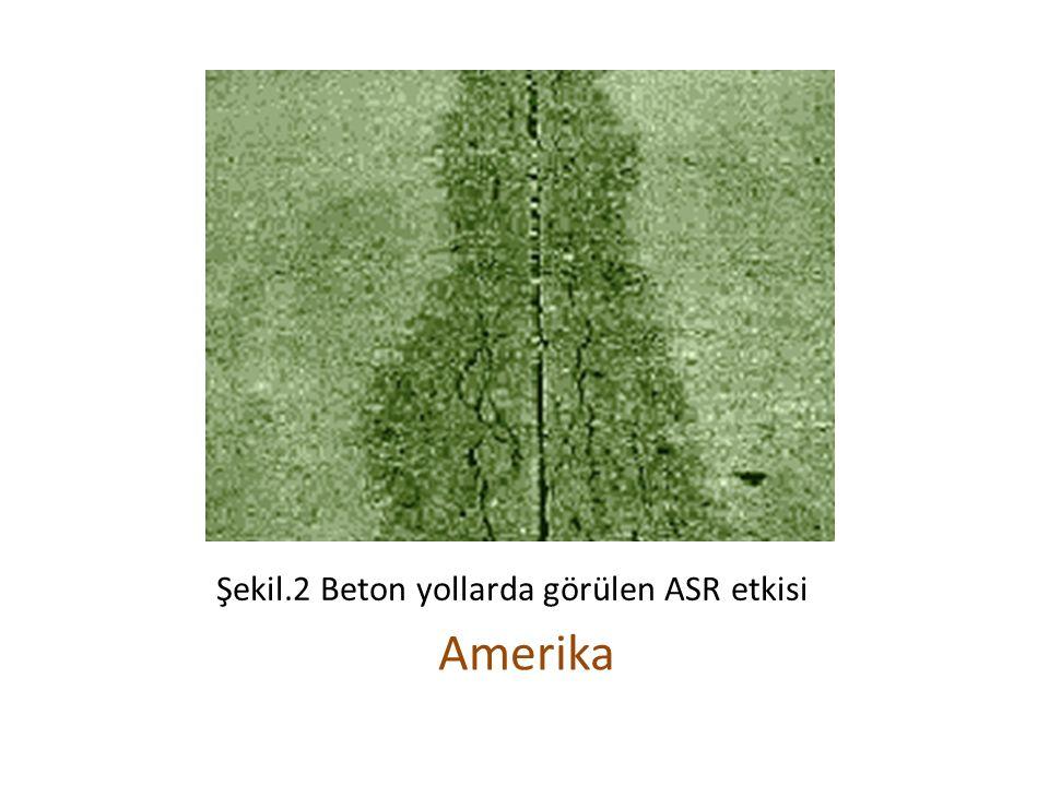 Şekil.2 Beton yollarda görülen ASR etkisi Amerika