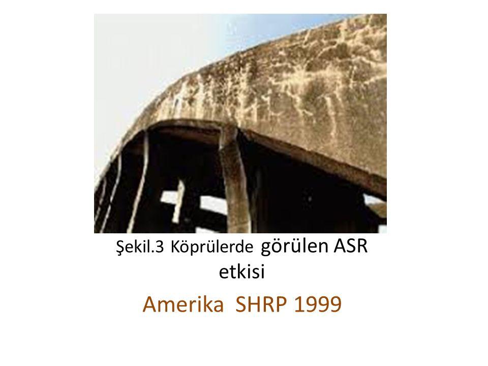 Şekil.3 Köprülerde görülen ASR etkisi Amerika SHRP 1999