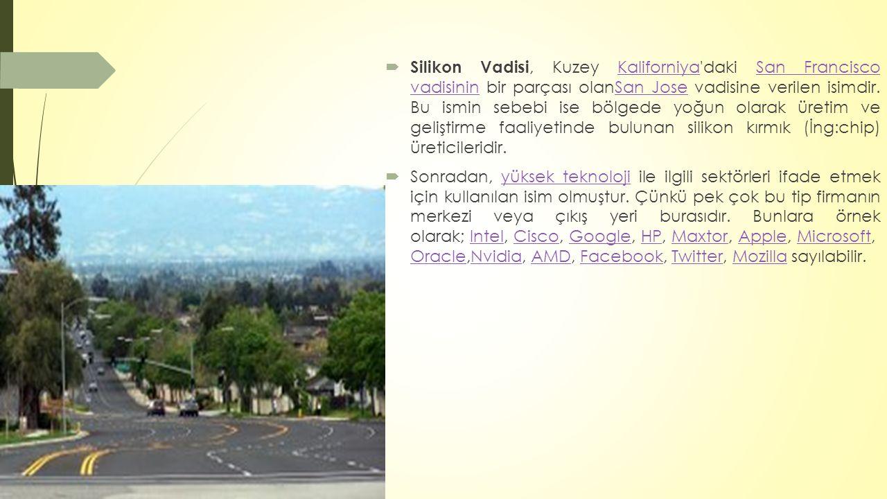  Silikon Vadisi, Kuzey Kaliforniya'daki San Francisco vadisinin bir parçası olanSan Jose vadisine verilen isimdir. Bu ismin sebebi ise bölgede yoğun