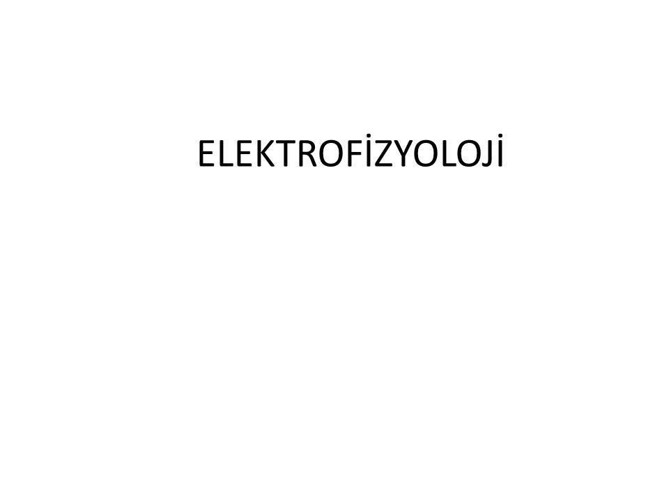 ELEKTROFİZYOLOJİ