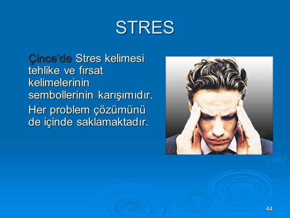 44 STRES Çince'de Stres kelimesi tehlike ve fırsat kelimelerinin sembollerinin karışımıdır.