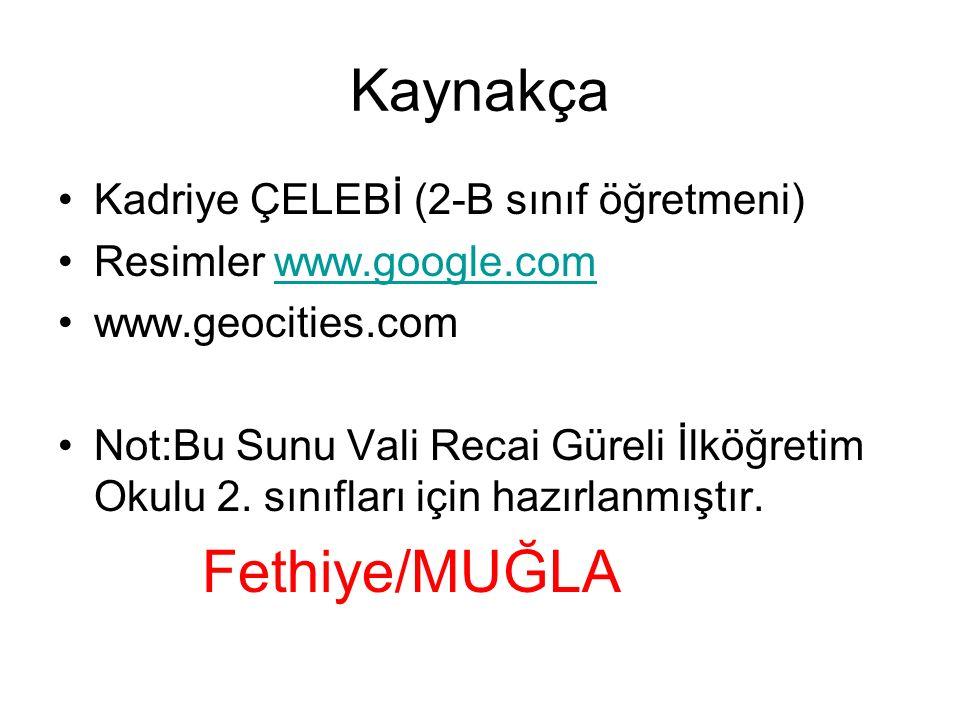 Kaynakça Kadriye ÇELEBİ (2-B sınıf öğretmeni) Resimler www.google.com www.geocities.com Not:Bu Sunu Vali Recai Güreli İlköğretim Okulu 2.