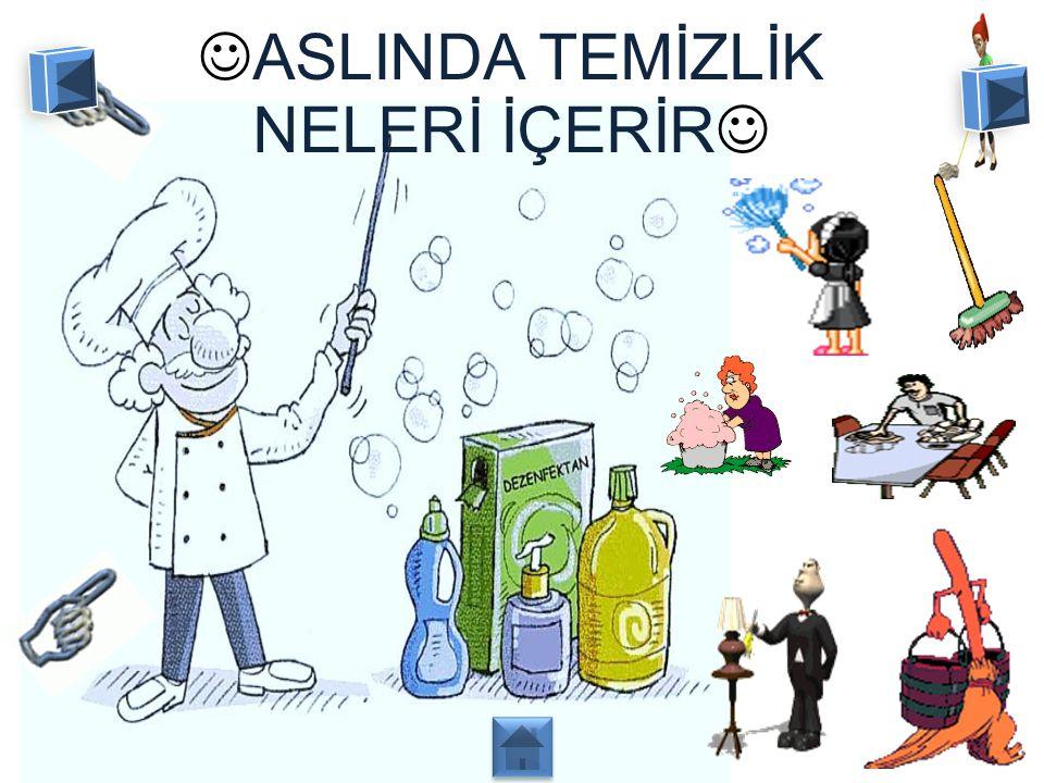 ASLINDA TEMİZLİK NELERİ İÇERİR