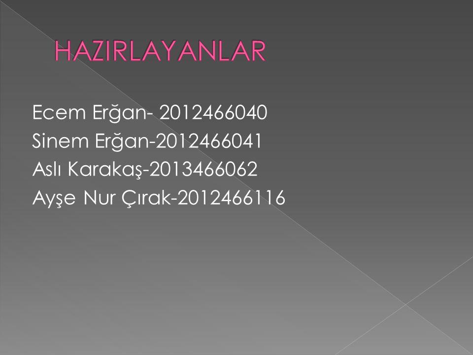 Ecem Erğan- 2012466040 Sinem Erğan-2012466041 Aslı Karakaş-2013466062 Ayşe Nur Çırak-2012466116