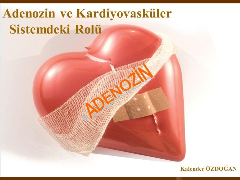 2 Adenozin .