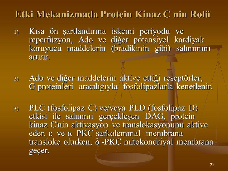 25 Etki Mekanizmada Protein Kinaz C nin Rolü 1) Kısa ön şartlandırma iskemi periyodu ve reperfüzyon, Ado ve diğer potansiyel kardiyak koruyucu maddele