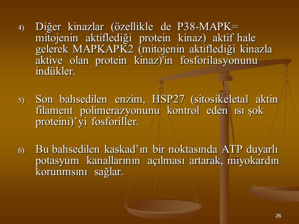26 4) Diğer kinazlar (özellikle de P38-MAPK= mitojenin aktiflediği protein kinaz) aktif hale gelerek MAPKAPK2 (mitojenin aktiflediği kinazla aktive ol