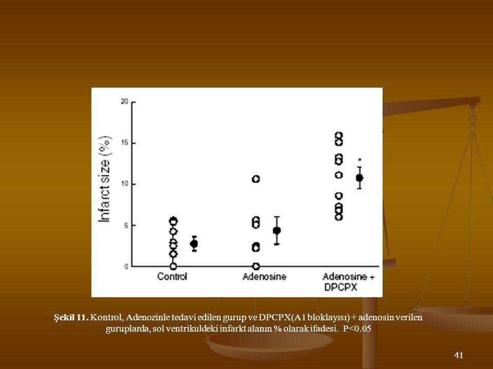 41 Şekil 11. Kontrol, Adenozinle tedavi edilen gurup ve DPCPX(A1 bloklayısı) + adenosin verilen guruplarda, sol ventrikuldeki infarkt alanın % olarak