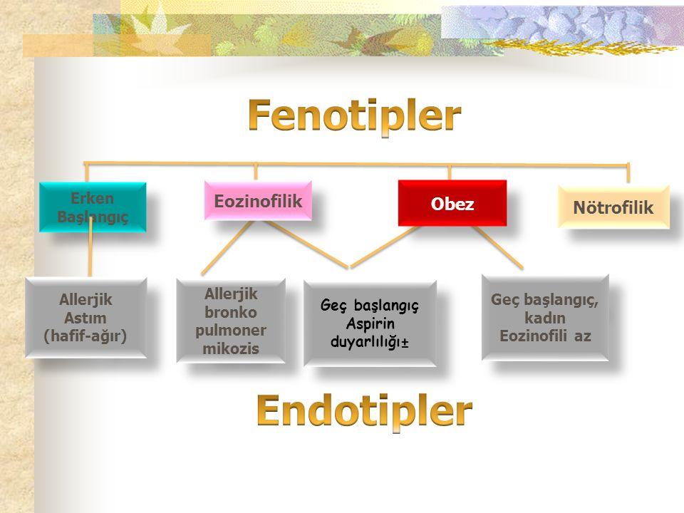 Erken Başlangıç Nötrofilik Allerjik Astım (hafif-ağır) Allerjik Astım (hafif-ağır) Allerjik bronko pulmoner mikozis Allerjik bronko pulmoner mikozis Geç başlangıç, kadın Eozinofili az Geç başlangıç, kadın Eozinofili az Geç başlangıç Aspirin duyarlılığı± Geç başlangıç Aspirin duyarlılığı± Eozinofilik Obez