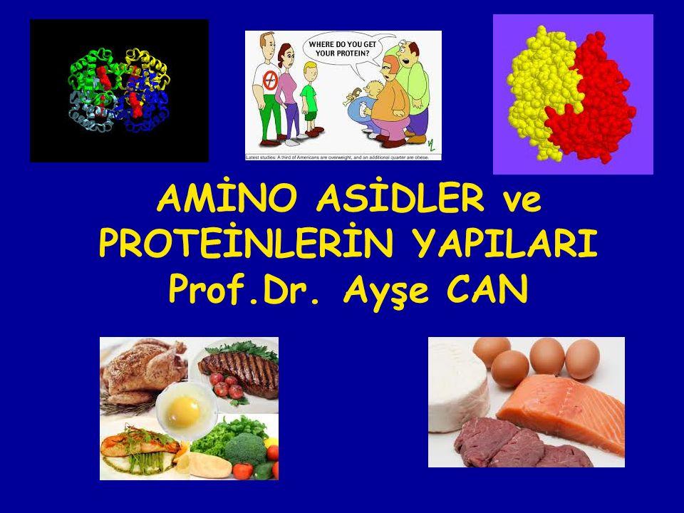 AMİNO ASİDLER ve PROTEİNLERİN YAPILARI Prof.Dr. Ayşe CAN