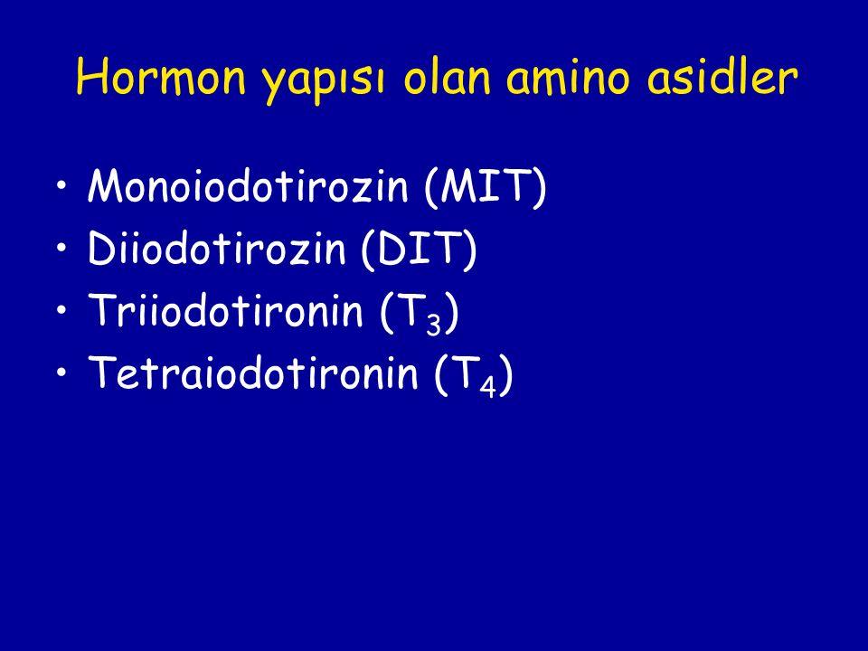 Hormon yapısı olan amino asidler Monoiodotirozin (MIT) Diiodotirozin (DIT) Triiodotironin (T 3 ) Tetraiodotironin (T 4 )