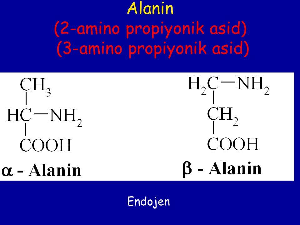 Alanin (2-amino propiyonik asid) (3-amino propiyonik asid) Endojen
