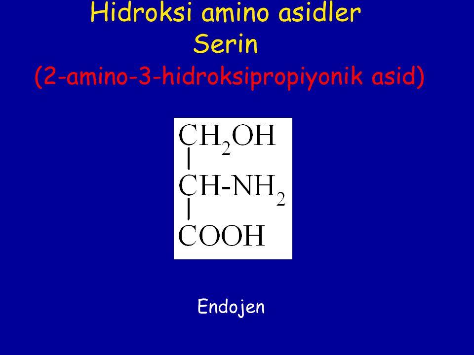 Hidroksi amino asidler Serin (2-amino-3-hidroksipropiyonik asid) Endojen