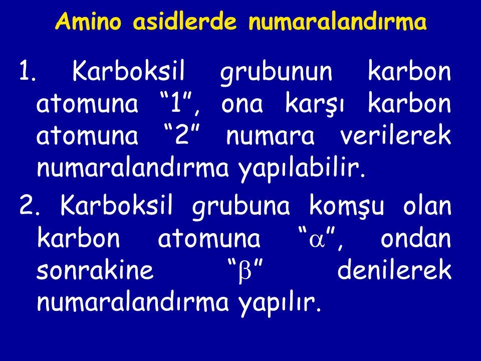 Doğada bulunan amino asidler,  -amino asidlerdir, yani amino grubu  -karbon atomunda bulunur.