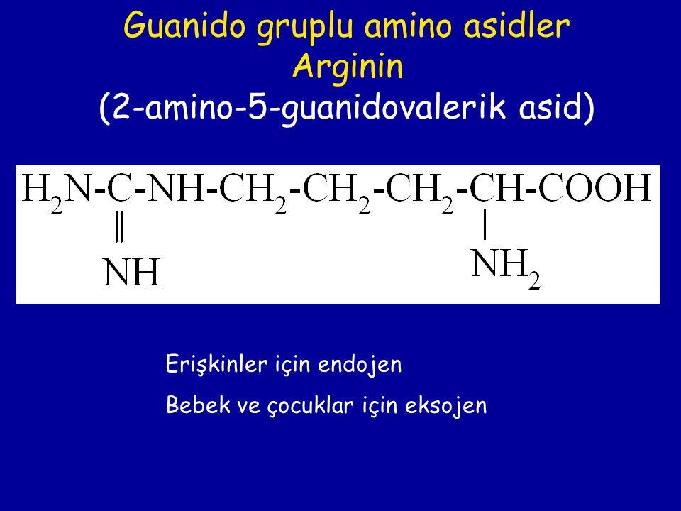 Guanido gruplu amino asidler Arginin (2-amino-5-guanidovalerik asid) Erişkinler için endojen Bebek ve çocuklar için eksojen