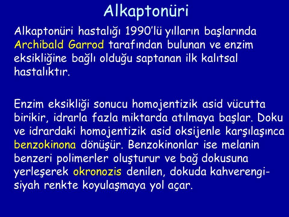 Alkaptonüri Alkaptonüri hastalığı 1990'lü yılların başlarında Archibald Garrod tarafından bulunan ve enzim eksikliğine bağlı olduğu saptanan ilk kalıt