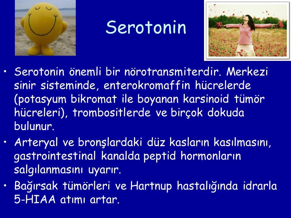 Serotonin Serotonin önemli bir nörotransmiterdir. Merkezi sinir sisteminde, enterokromaffin hücrelerde (potasyum bikromat ile boyanan karsinoid tümör