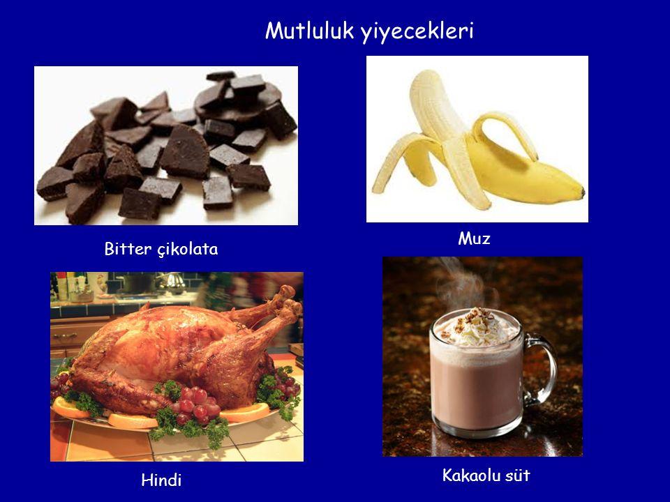 Mutluluk yiyecekleri Bitter çikolata Muz Hindi Kakaolu süt