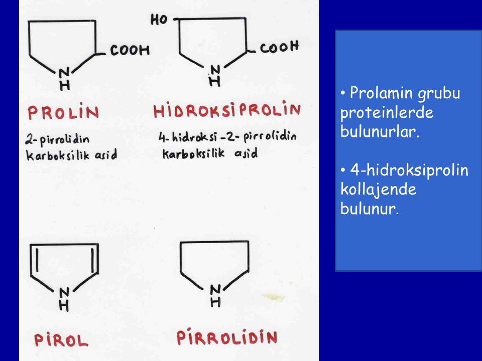 Prolamin grubu proteinlerde bulunurlar. 4-hidroksiprolin kollajende bulunur.