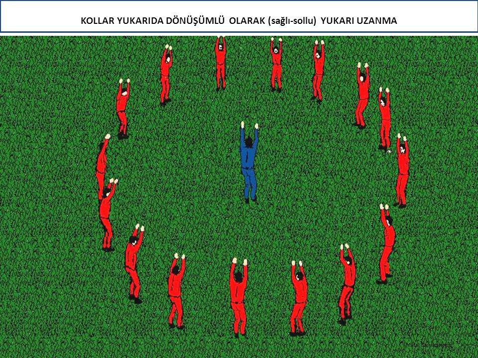 KOLLAR YUKARIDA DÖNÜŞÜMLÜ OLARAK (sağlı-sollu) YUKARI UZANMA Murat Başyazıcıoğlu