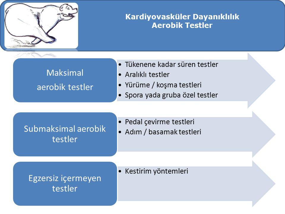 Kardiyovasküler Dayanıklılık Aerobik Testler Tükenene kadar süren testler Aralıklı testler Yürüme / koşma testleri Spora yada gruba özel testler Maksi